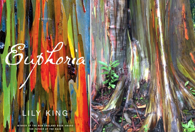 Rainbow Tree and Euphoria by Lily King
