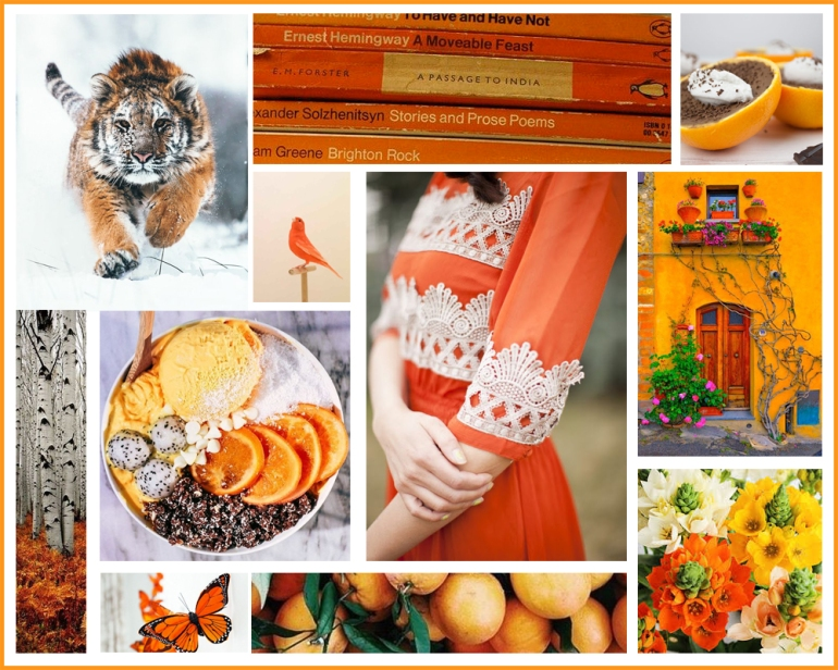 bloggeraestheticorange